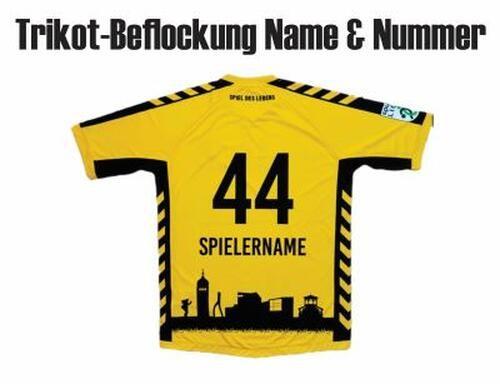 Bregenz Handball Druck Name Nummer